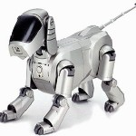 Robot hogar_02